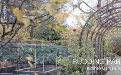 Rudding Park Kitchen Garden Tour